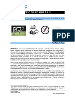 CASO GRUPO ALBA SA Texto del caso.pdf