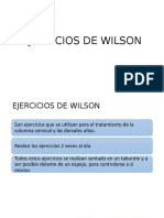 EJERCICIOS DE  WILSON Y DE WILLIAMS.pptx