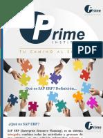 Introduccion al SAP.pdf