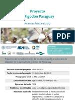 Proyecto +algodon