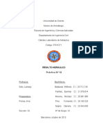 PRACTICA Nº13  RESALTO HIDRAULICO (1).docx