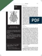 2008 - Oliva, Iorio - Silphidae.pdf