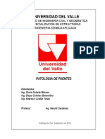 Informe Patologia en Puentes Terminado