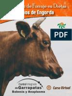 23. Utilizacion de Forraje en Corrales de Engorda.pdf