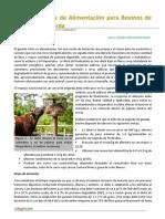 24. Fases de Alimentacion para Bovinos de Carne.pdf