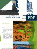 Biorremediacion de suelos