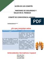 Conformacion-Comites CAPACITACION.pptx
