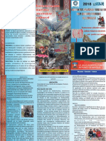TRIPTICO LIMA FENCYT PDF