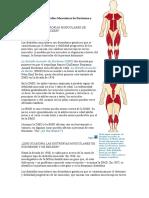 Hechos Sobre las Distrofias Musculares de Duchenne y Becker