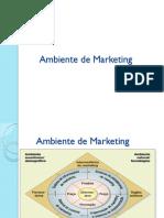 Aula 3  ambiente de marketing