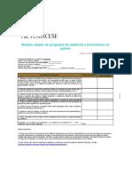 modelo_programa_de_auditoria_sobre_inversiones