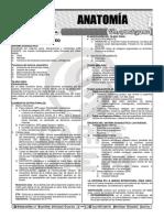 anatomia g2.pdf