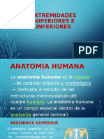 Anatomía humana.pptx