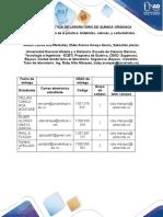 -Formato Informes - Química Orgánica.docx
