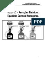 Módulo 3 - Reações Químicas. Equilíbrio Químico Homogéneo