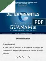 Aula Determinantes