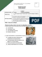 DIAGNOSTICO ARTES 8