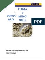 MANZANILLA.docx