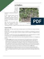 Taille-des-arbres-fruitiers