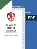 Libro Derecho a La Familia