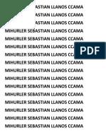 MIHURLER SEBASTIAN LLANOS CCAMA.docx