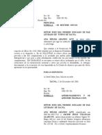 ANA ARANDO.doc