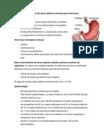 Cáncer gástrico ADULTO 02-10.pdf