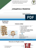 Região Lombopélvica e Assoalho Pélvico.pdf