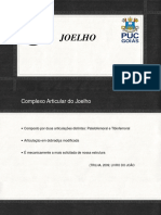 Joelho.pdf