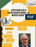 Aprendizaje observacional o modelado