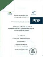 PMP_M_Tesis_2011_Fatima_Orozco_Olivarez.pdf