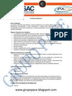 Auditoria V Material de apoyo 1er Parcial 2016.pdf