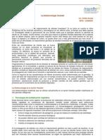 biotecnologiaforestal