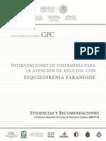Intervenciones de Enfermeria para adultos con esquizofrenia paranoide - INSS MEXICO