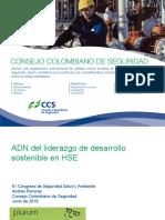 GID1031_2018_adn_del_liderazgo_de_desarrollo_sostenible_en_HSE_Andres_Ramirez