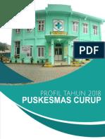 PROFIL PUSKESMAS 2018.pdf