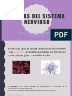 Células del sistema nervioso.pptx
