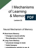 ~B22 Neural Mechanisms of Learning & Memory
