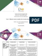 Formato Tarea 2 - Diligenciar cuadros de análisis sobre conceptos principales de la unidad 1 (1)