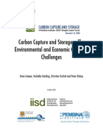 Ccs Discuss Environment Economic All