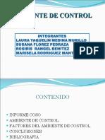 COSO auditoria ambiente de control.pdf