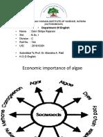 economic_importance_of_algae