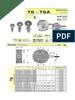 AEP-TS-1.pdf