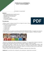ROTEIRO DE AULA  EXPERIMENTAL -densidade