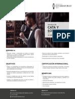 escuelas_cata_final_2020.pdf