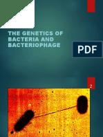 Genetica bacteriana. Bacteriofagul.