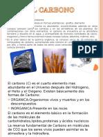 CICLO DEL CARBONO EXPOSICION