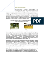 Apuntes_de_nutricion.docx