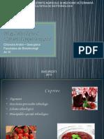 148700782-Fluxul-Tehnologic-Pentru-Dulceata-de-Capsuni-2003