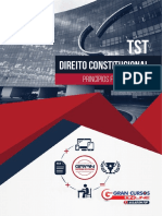 246330-principios-fundamentais.pdf